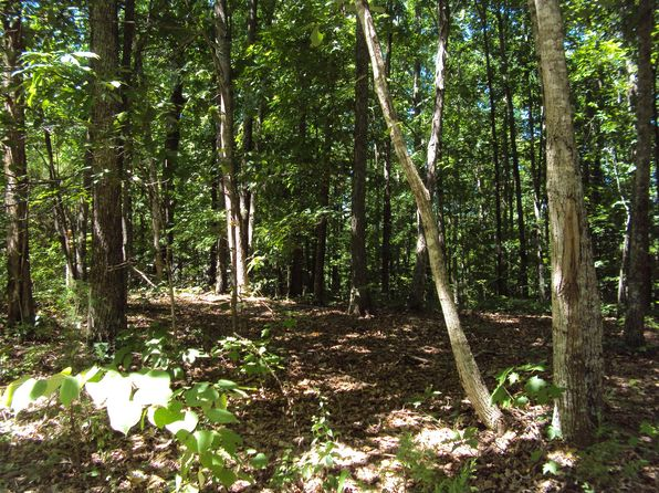 null bed null bath Vacant Land at 1 Poplar Point Rd Sparta, TN, 38583 is for sale at 20k - 1 of 3