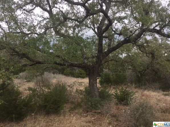 null bed null bath Vacant Land at 157 ALONDRA LN SPRING BRANCH, TX, 78070 is for sale at 59k - 1 of 7