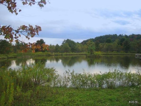 null bed null bath Vacant Land at 0 W Peakes Rd Meredith, NY, 13753 is for sale at 122k - 1 of 35
