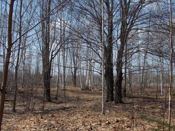 null bed null bath Vacant Land at  Tbd Aura Rd Lanse, MI, 49946 is for sale at 37k - 1 of 8