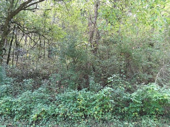 null bed null bath Vacant Land at  Lynch Ln Gainesboro, TN, 38562 is for sale at 6k - google static map