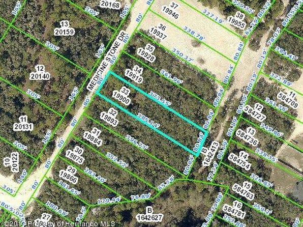 null bed null bath Vacant Land at 0 Medicine Stone Dr Ridge Manor, FL, 33597 is for sale at 9k - google static map