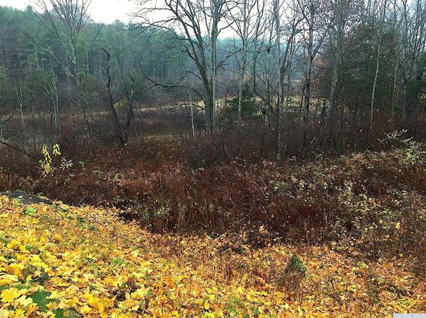 null bed null bath Vacant Land at 0 Ny Rte 32 Cairo, NY, 12413 is for sale at 70k - 1 of 3