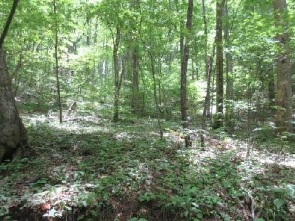 null bed null bath Vacant Land at  Toccoa Walk-12 Acres Suches, GA, 30572 is for sale at 119k - 1 of 6