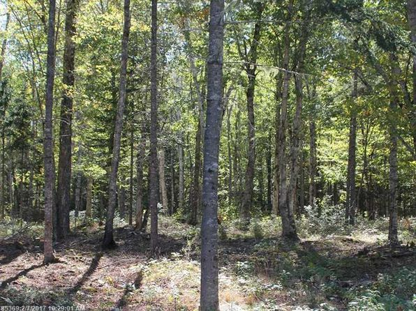 null bed null bath Vacant Land at M 1 Carter Farm Ln Surry, ME, 04684 is for sale at 89k - 1 of 4