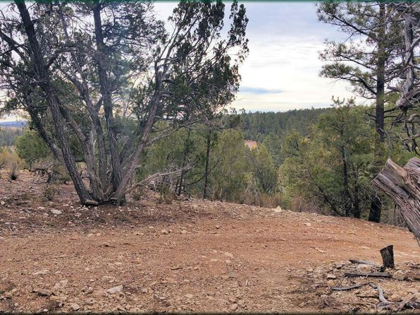 null bed null bath Vacant Land at 2926 Deer Hill Rd Heber, AZ, 85928 is for sale at 100k - 1 of 4