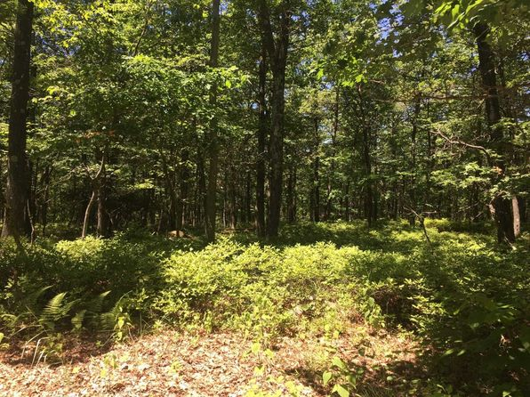 null bed null bath Vacant Land at 400 E Mountain Rd Nor Rd Cold Spring, NY, 10516 is for sale at 165k - 1 of 11