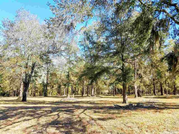 null bed null bath Vacant Land at 20763 NW 250th St High Springs, FL, 32643 is for sale at 62k - 1 of 6