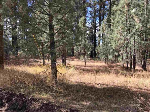 null bed null bath Vacant Land at 6760 SYLVAN RD PORTOLA, CA, 96122 is for sale at 64k - 1 of 17