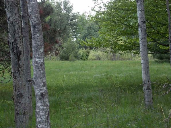 null bed null bath Vacant Land at  Tbd Ford Dr L'Anse, MI, 49946 is for sale at 25k - 1 of 7