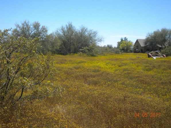 null bed null bath Vacant Land at 36XXX N 25th St Cave Creek, AZ, 85331 is for sale at 125k - 1 of 10