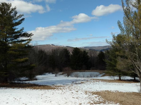null bed null bath Vacant Land at  Allen Teator Durham, NY, 12422 is for sale at 33k - 1 of 3