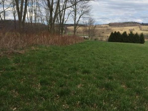 null bed null bath Vacant Land at 0 Pope Hill Rd Columbus, NY, 13460 is for sale at 22k - 1 of 9