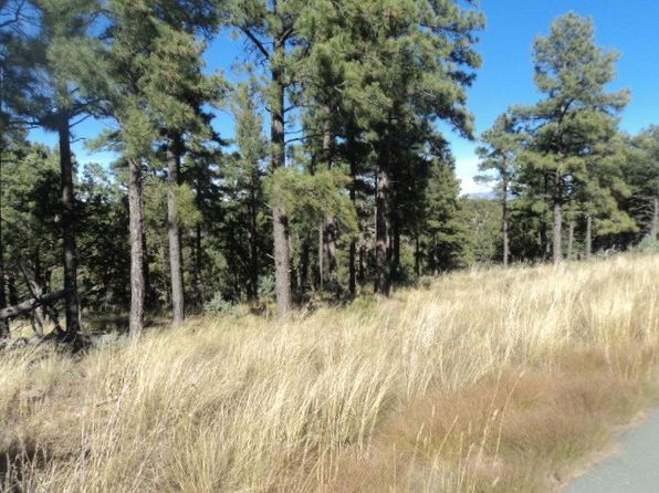 null bed null bath Vacant Land at  Golden Eagle Ct Alto, NM, 88312 is for sale at 120k - 1 of 3