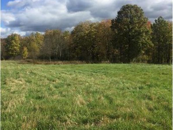 null bed null bath Vacant Land at  New Milford Rd Ravenna, OH, 44266 is for sale at 44k - 1 of 2