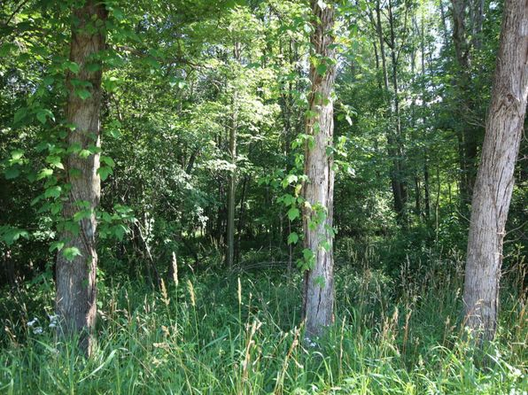 null bed null bath Vacant Land at 10.2 Acres E Uv Ave Vicksburg, MI, 49097 is for sale at 60k - 1 of 5