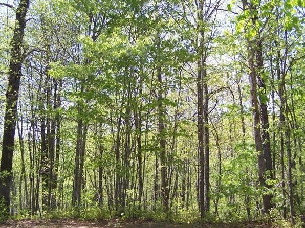 null bed null bath Vacant Land at 0 Upper Mdws Sky Valley, GA, 30537 is for sale at 10k - 1 of 8