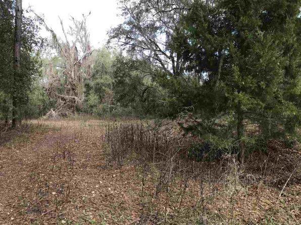 null bed null bath Vacant Land at  Tbd Dills Rd Monticello, FL, 32344 is for sale at 25k - 1 of 36