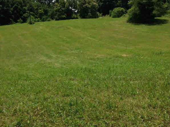 null bed null bath Vacant Land at  Squirrel Spur Rd Meadows of Dan, VA, 24120 is for sale at 90k - 1 of 10