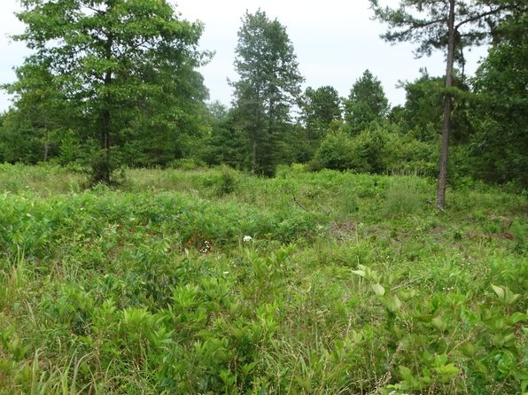 null bed null bath Vacant Land at  Tollie Kay Ln Mountain View, AR, 72560 is for sale at 30k - 1 of 4
