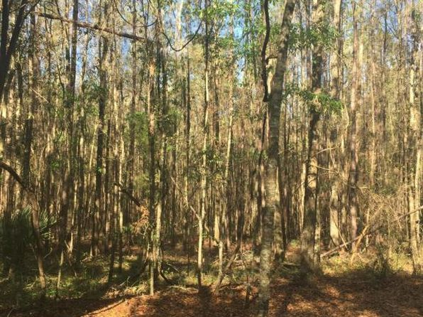 null bed null bath Vacant Land at 0 NW 90 Ct Fanning Springs, FL, 32693 is for sale at 20k - google static map