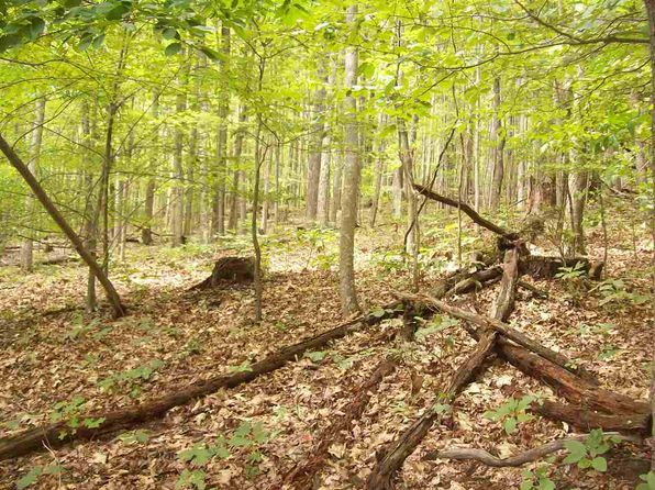null bed null bath Vacant Land at 3124 W Short Mtn. Rd Sneedville, TN, 37869 is for sale at 27k - 1 of 6