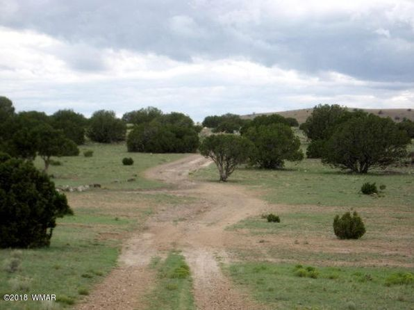 null bed null bath Vacant Land at  Thorn Ln Concho Valley, AZ, 85924 is for sale at 5k - 1 of 15
