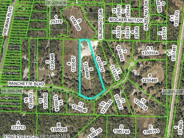 null bed null bath Vacant Land at 0 Ranchette Blvd Webster, FL, 33597 is for sale at 70k - google static map