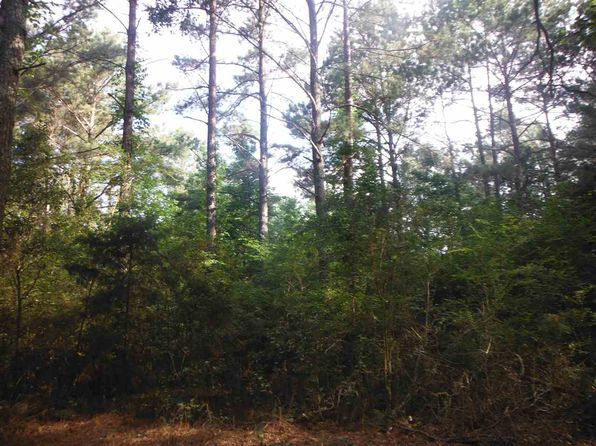 null bed null bath Vacant Land at 01 Sessums Rd Lena, MS, 39094 is for sale at 172k - 1 of 6