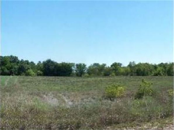 null bed null bath Vacant Land at  Whitetail Rd Polo, MO, 64671 is for sale at 29k - google static map