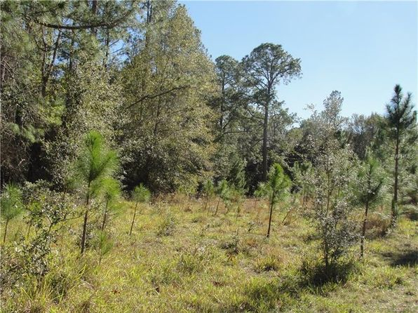 null bed null bath Vacant Land at  STATE ROAD 19 ALTOONA, FL, 32702 is for sale at 215k - 1 of 19