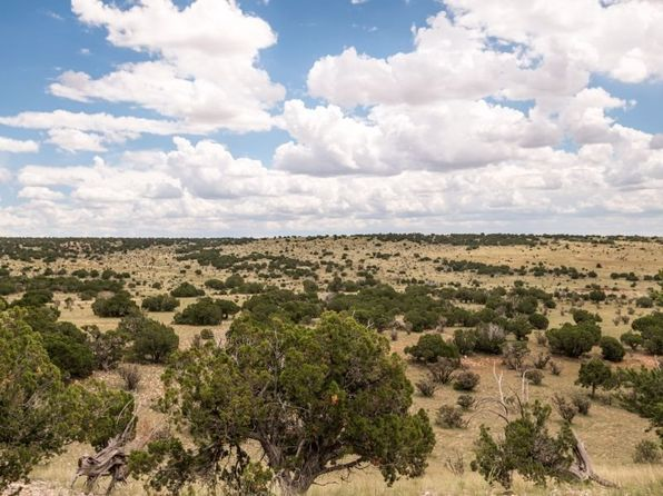 null bed null bath Vacant Land at 100 Rough Rd Stanley, NM, 87056 is for sale at 98k - 1 of 22