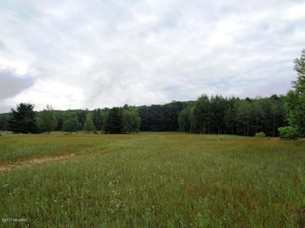 null bed null bath Vacant Land at 6984 Old State Rd Stanwood, MI, 49346 is for sale at 418k - 1 of 30