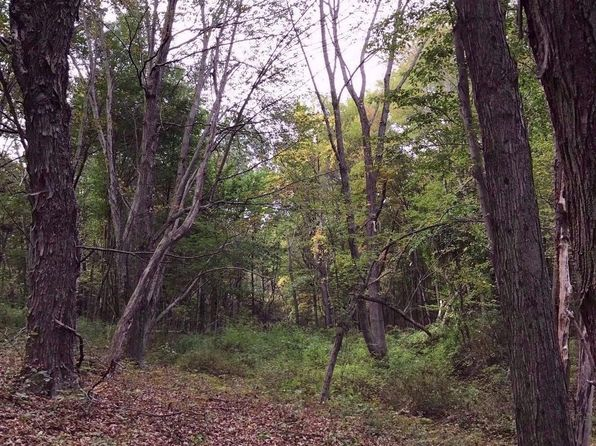 null bed null bath Vacant Land at 0 Connelly Rd Copake, NY, 12516 is for sale at 239k - 1 of 6