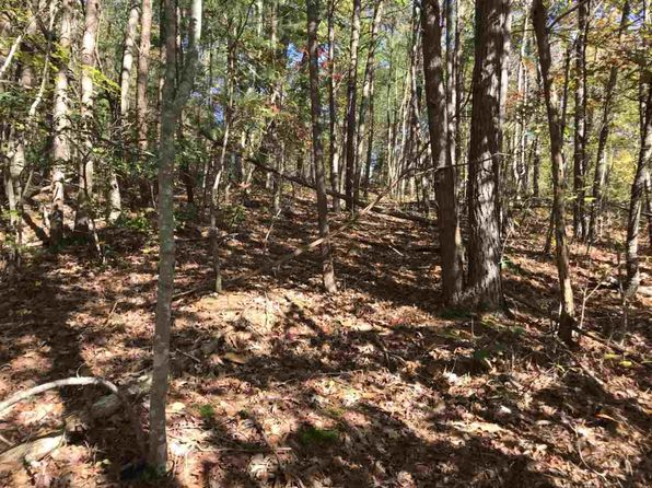 null bed null bath Vacant Land at  Lot 16 Blackfeet Way Del Rio, TN, 37727 is for sale at 9k - 1 of 5