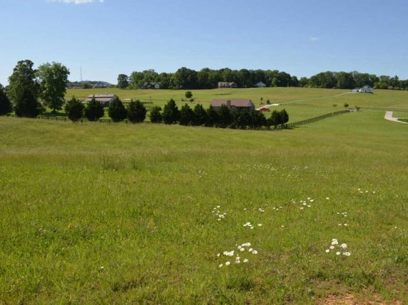 null bed null bath Vacant Land at  Richland Rd Blaine, TN, 37709 is for sale at 43k - 1 of 11