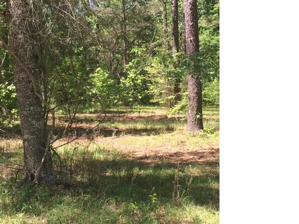 null bed null bath Vacant Land at 000 NW 282nd Ln Alachua, FL, 32615 is for sale at 47k - 1 of 3