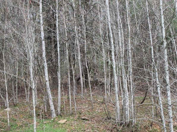 null bed null bath Vacant Land at 00000000 Windingstairs Rd Nantahala, NC, 28781 is for sale at 45k - google static map