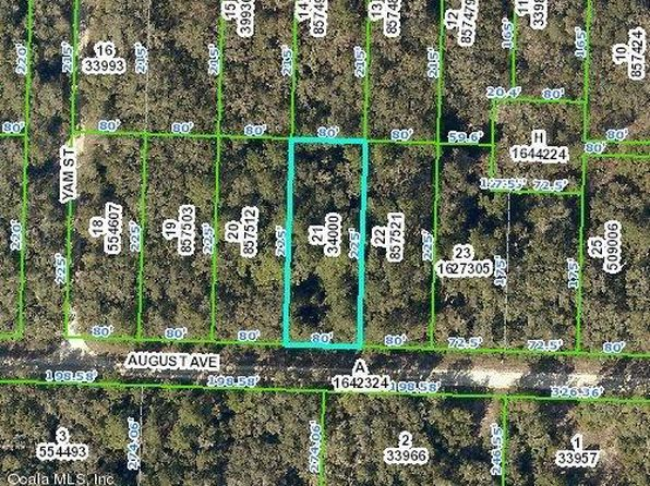 null bed null bath Vacant Land at 33489 AUGUST AVE WEBSTER, FL, 33597 is for sale at 6k - google static map