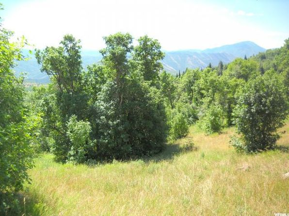 null bed null bath Vacant Land at 95 N Springville, UT, 84663 is for sale at 45k - 1 of 4