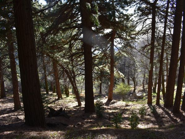 null bed 1 bath Vacant Land at  Grass Valley Aly Lake Arrowhead, CA, 92352 is for sale at 37k - 1 of 13