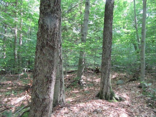 null bed null bath Vacant Land at 25 Lincoln Mountain Rd Greenfield Center, NY, 12833 is for sale at 86k - 1 of 13