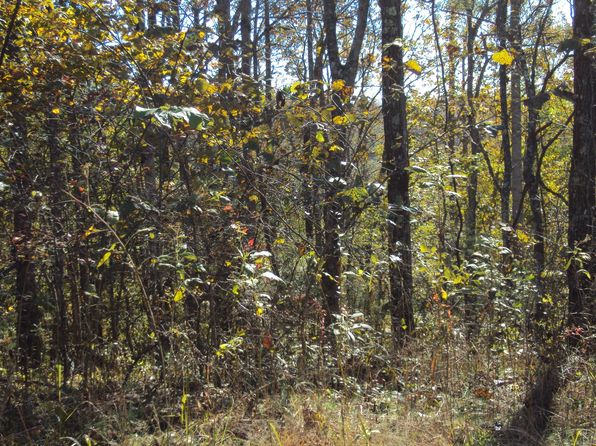 null bed null bath Vacant Land at 8184 Stacey Rd Smithville, TN, 37166 is for sale at 25k - 1 of 2