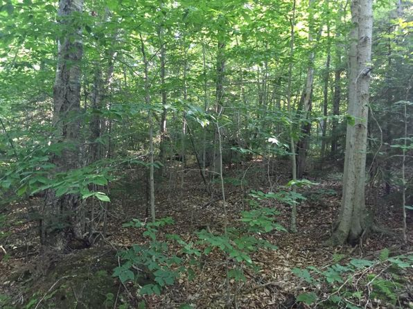 null bed null bath Vacant Land at 29 Ware Rd Wilmington, VT, 05363 is for sale at 58k - 1 of 8