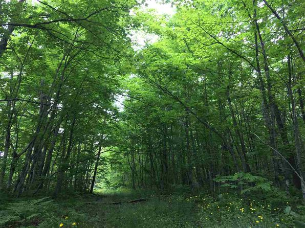 null bed null bath Vacant Land at  Tbd M26 Trimountain S Trimountain, MI, 49905 is for sale at 26k - 1 of 15