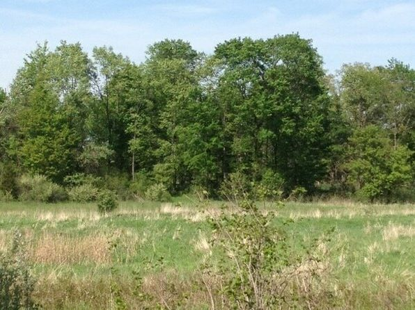 null bed null bath Vacant Land at  Kane Rd Fowlerville, MI, 48836 is for sale at 62k - 1 of 13