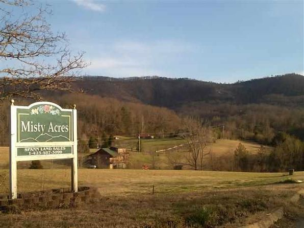 null bed null bath Vacant Land at  Schisandra Ln Cosby, TN, 37722 is for sale at 30k - google static map