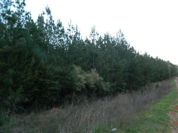 null bed null bath Vacant Land at 0000 Cr Brantley, AL, 36009 is for sale at 125k - 1 of 4