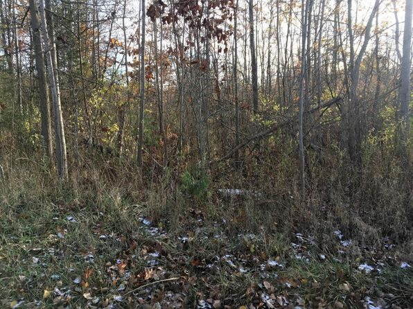 null bed null bath Vacant Land at 108TH AVENUE AVE PULLMAN, MI, 49450 is for sale at 58k - 1 of 4