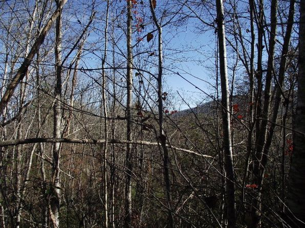 null bed null bath Vacant Land at 10 Possum Holler Bryson City, NC, 28713 is for sale at 20k - 1 of 8
